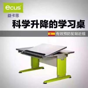 益卡思 毕加索 毕加索书桌椅 功能型书桌 EB120NT/B