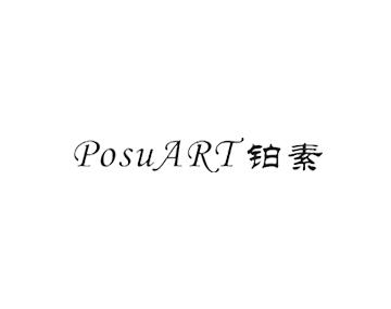 铂素(重庆南坪商场)